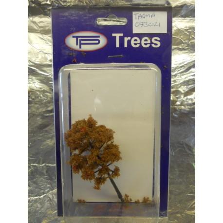 ** Tasma 073021 Ash Tree Autumn (1) Approx 90mm